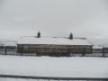 Dent Station snowhuts.